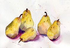 Watercolor Pears | What's Jenny Making?