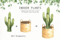 Ad: Indoor Plants Watercolor Clipart by everysunsun on The set of high quality hand painted watercolor indoor plants and plant pots images. A fiddle leaf fig, snake plant, cactus and other animal Inside Plants, Cool Plants, Cactus Plants, Air Plants, Watercolor Plants, Watercolor Leaves, Watercolour, Tall Indoor Plants, Hanging Plants