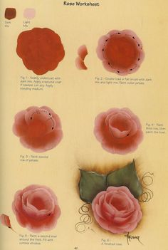 Rose variation by the queen of decorative painting: Priscilla Hauser. China Painting, Tole Painting, Fabric Painting, Painting & Drawing, Peony Drawing, Painting Lessons, Painting Tips, Painting Tutorials, Draw Tutorial