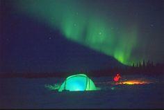 Google Image Result for http://www.alaska-in-pictures.com/data/media/11/winter-tent-northern-lights_581.jpg