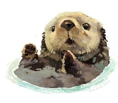 Otter Illustration Xuewawa