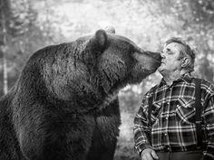 Meet Sulo - the Bearman Kuusamo Finland