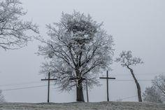 Zamrznuté Slovensko Pezinok. Utility Pole