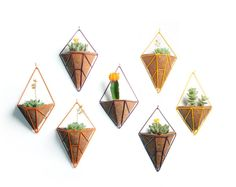 Hedge – geometric planters