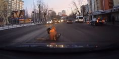 These Tender Moments Caught On Dash Cams Restored My Faith In Humanity. - http://www.lifebuzz.com/dash-cam/