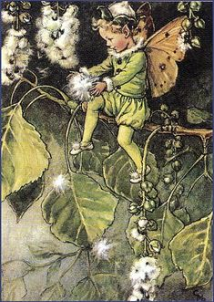 Vintage Fairy Illustration---Cecily Mary Barker by leslie