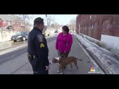 Police rewarding law abiding citizens-now we are talking! This Police Officer Gives People Walking Their Dog Citations, And They Thank Him For It
