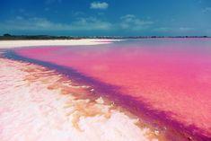 Laguna Salada de Torrevieja, Spain Laguna Salada de Torrevieja is a natural phenomenon, where the water looks pink due to a type of special algae.