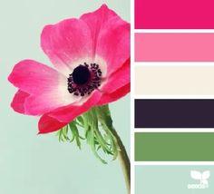Beautiful Floral Color Palette