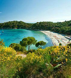 Tendi verhuurt op Elba prachtige safari lodgetenten met eigen badkamer! Isola d'Elba, spiaggia di Fetovaia. http://www.tendi.nl/bestemmingen/tenuta-delle-ripalte