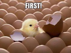 I'm first! Ha-Ha-Ha-Ha-Ha!
