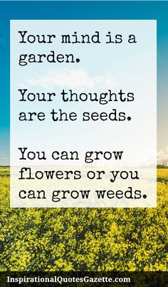 Your mind is a garden. Your thoughts are the seeds. You can grow flowers or you…