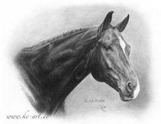 Hannoverian - Horse drawing by Katja Eichhorn