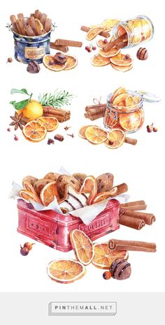 Dried oranges and cinnamon on Behance - created on Illustration Noel, Christmas Illustration, Watercolor Illustration, Watercolor Food, Watercolor Paintings, Planner Bullet Journal, Dried Oranges, Christmas Drawing, Food Drawing