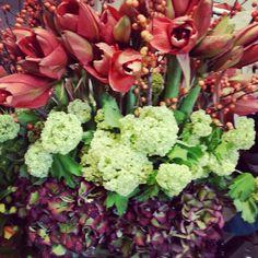 Coral amarillys, viburnum and dutch antique hhydrangea