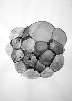 Bubble Drawing: by Charlotte X. C. Sullivan