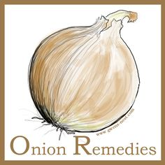 Onion remedies are at your fingertips in the average kitchen. The humble onion can surprisingly treat many ailments very effectively.