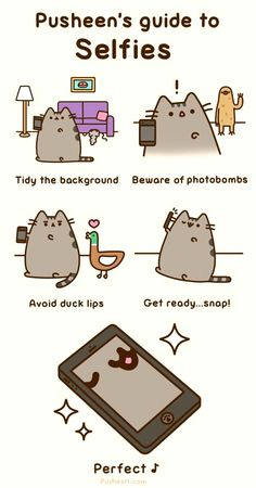Pusheen's guide to selfies