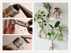 DIY Easy Light Bulb Planter | UsefulDIY.com Follow us on Facebook ==> https://www.facebook.com/UsefulDiy