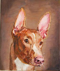 Original Acrylic painting of the dog,PHARAOH HOUND