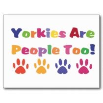 Yorkies Are People Too postcards
