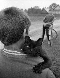 I like that this photo capture a cat showing his love for a human along side his anger that someone caught it on film.
