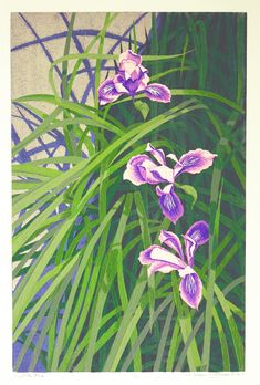 Wild Iris by Gordon Louis Mortensen