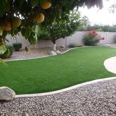 Backyard Ideas Without Grass For Dogs Thorplc Com
