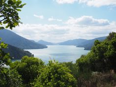 Queen Charlotte sound Road Trip, Charlotte, River, Mountains, Queen, Nature, Outdoor, Coups, Europe