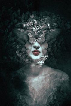 Der Tod ist bisweilen ein Schmetterling