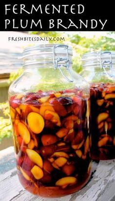 Fermented Plum Brandy at FreshBitesDaily.com