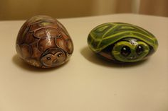 Pet Turtle and Tortoise Handpainted Rock by DeRocs on Etsy