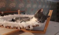 DIY : fabriquez un hamac tout doux pour votre chat                                                                                                                                                                                 Plus