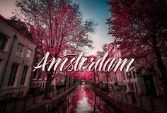 #amsterdam #brushlettering illustration
