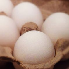 Eggtastic. iPhone photo.