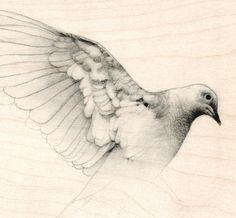 Bird Art Dove Study on Wood Art Print. by TheHauntedHollowTree on Etsy