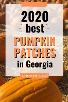 (Updated 2020) Pumpkin Patches in Georgia Local Pumpkin Patch, Best Pumpkin Patches, Atlanta Travel, Atlanta Georgia, The Good Place