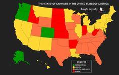 Marijuana Legalization 🍁The State of the 50 States 🇺🇸