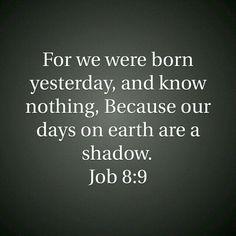 Looks like we were, born yesterday