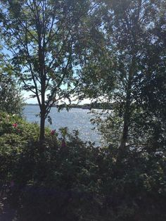 Helsinki Helsinki, River, Outdoor, Outdoors, Outdoor Games, Outdoor Living, Rivers