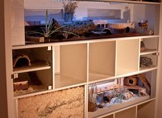 IKEA hack, Expedit turned into an awesome hamster mansion!