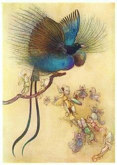 """The most beautiful bird of paradise"" - Water Babies, A Fairy Tale for a Land Baby by Charles Kingsley, 1909 - illustration by Warwick Goble Art And Illustration, Vintage Illustrations, Leprechaun, Fairy Land, Fairy Tales, Pop Art, Warwick Goble, Indian Theme, Most Beautiful Birds"