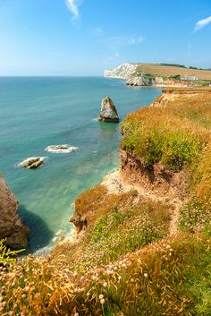 Isle of Wight - Freshwater Bay by Deirdre Gregg Childhood happy place. Great Places, Beautiful Places, Places To Travel, Places To Visit, England, Isle Of Wight, Flora, British Isles, Adventure Is Out There