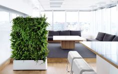 living wall section in living room