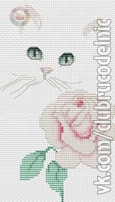 gatto con rosa-1
