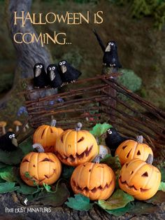 :: Crafty :: Clay ☾☾ Halloween ☾☾ Miniature Autumn Figure & Food ☾☾ Pixie Dust Miniatures: Making Halloween