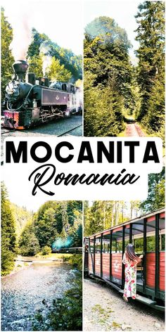 Riding the Mocanita forestry steam train in Romania, and also the last steam train in Europe, is a dream come true for me. For a long time, I wanted to take the steam train through the forest, in a wagon without windows #mocanita #trains #romania #steamtrain #tavelromania #maramures #europeandestinations | mocanita | maramures | best things to do in romania | mocanita forestry steam train | last forestry steam train in europe | romania top attractions | romania travel guide