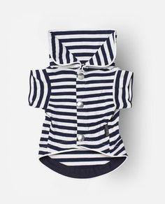 Jersey para perro Nala azul, look marinero