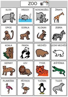 Baby Time, Exotic Pets, Teaching English, Montessori, Activities For Kids, Language, Comics, Logos, Beehive