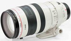 Canon 100-400 lens hire from www.lenslocker.co.uk